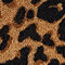 Fabric Swatch image of Stories leopard print wool scarf in orange