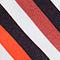 Fabric Swatch image of Stories rainbow stripe bikini briefs in white