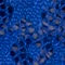 Fabric Swatch image of Stories star lace hipster briefs in blue