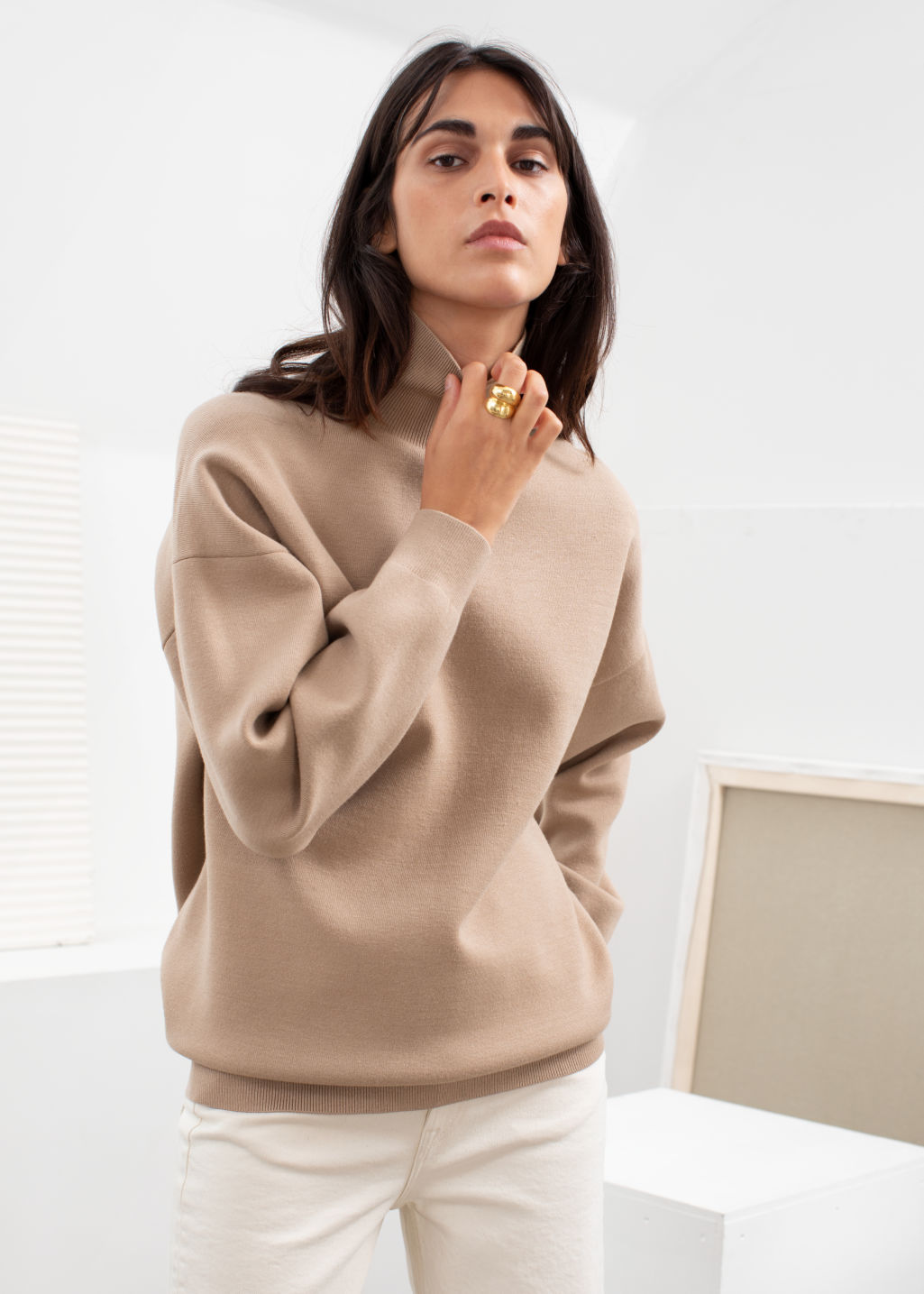 Model front image of Stories oversized micro knit turtleneck in beige