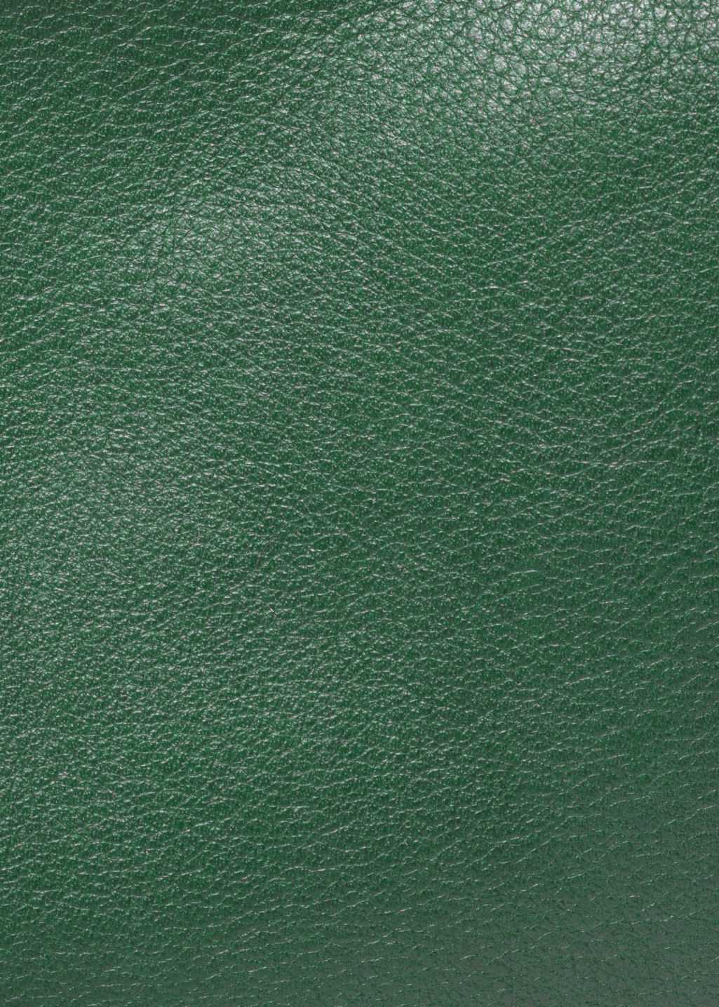 Detailed image of Stories d-ring crossbody bag in green