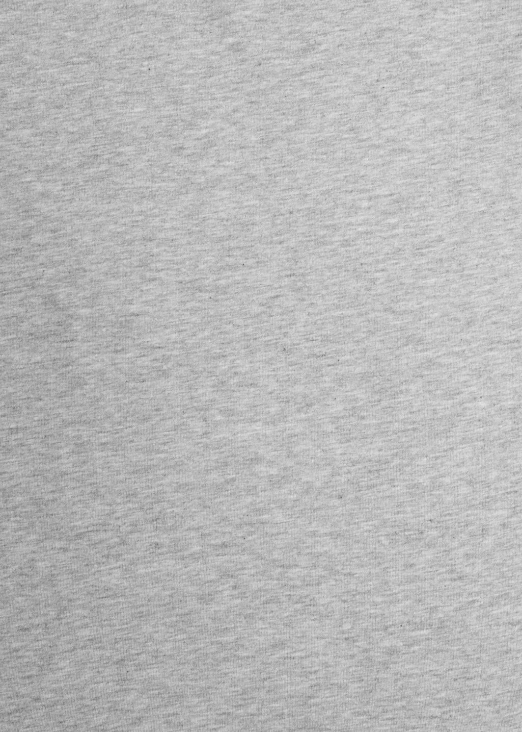 Detailed image of Stories organic cotton t-shirt in grey